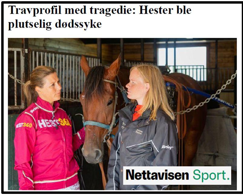 Hester ble syke Nettavisen